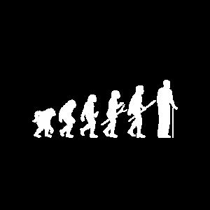 Evolution Greis