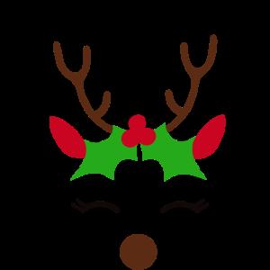 Einhorn Weihnachts Rentier