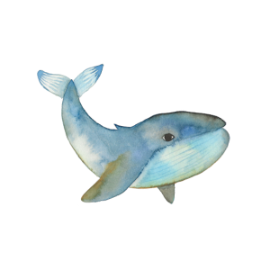 Wal Aquarell