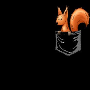 Lässig niedliches Eichhörnchen In Deiner Tasche