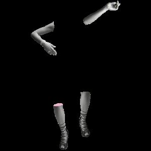 LEGS & ARMS