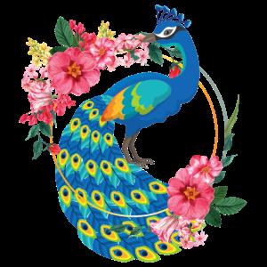 Pfau Vogel Tier Blumen Flowers Blumenkranz