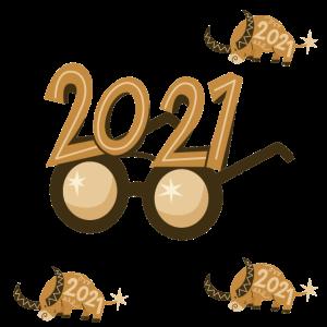 DIE NEUE ÄRA 2021