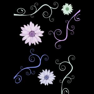 Pastellfarbene Blumen auf schwarzem Hintergrund
