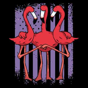 Drei Flamingos halten Haendchen