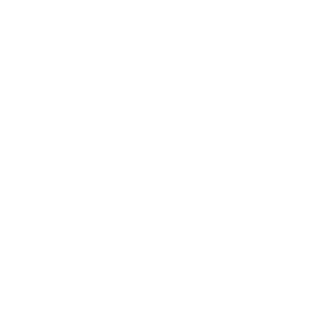 eagle portrait illustration head