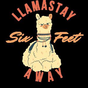 Lamastay sechs Fuß entfernt - sozial distanziertes Lama