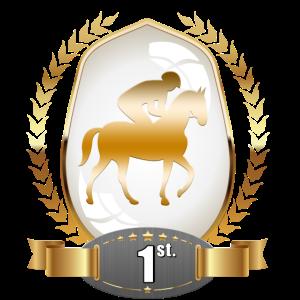 Pferdepreis 1. Platz Gewinner