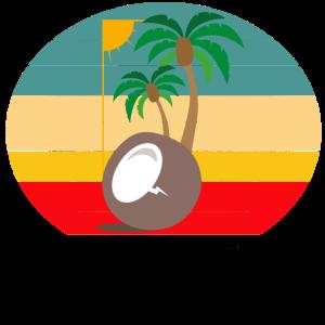 Kokosnuss Palmen Sunset