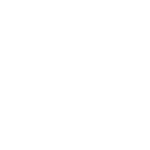 spinne silhouette