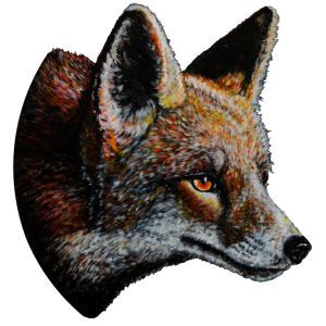 Fuchs Portrait