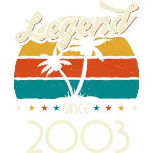 Vintage 2003 03 Geburtstag Retro Jahrgang Geschenk