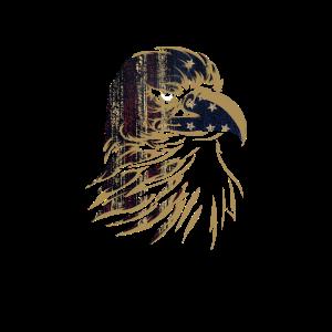 Adler Illustration Greifvogel USA