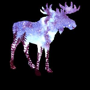 Elch Wald Nachthimmel