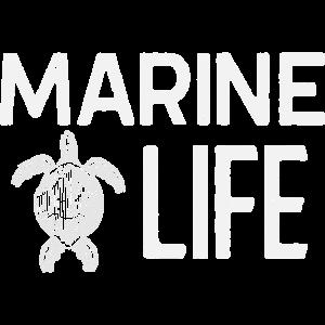 Marine Life Ocean Sea Animals Turtle Tortoise