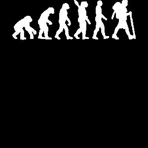 Wanderer-Evolution