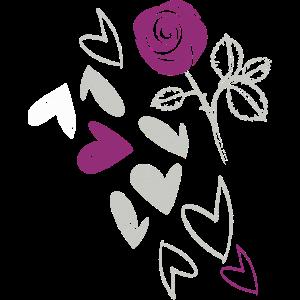 Rose, Zeichnung, Stern, Sketch, illustration