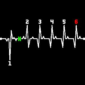 Motorrad Heartbeat Gear