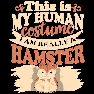 Hamster Nagetier Pelzig Guinea Tierchen Kostüm