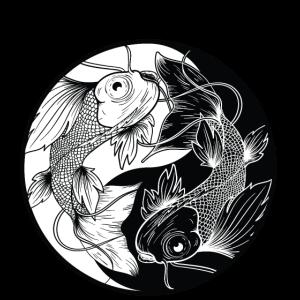 Yin Yang Koi Fische innerer Frieden