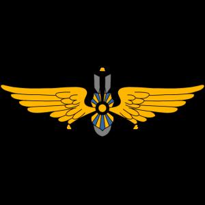 Militär Pilot
