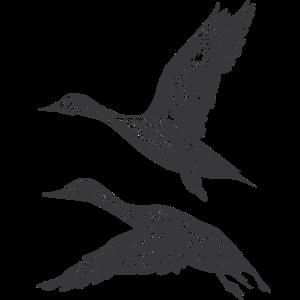 Flug Ente
