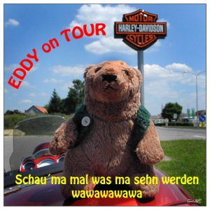 EDDY on the Road