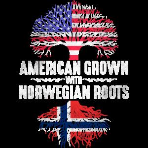 Amerikaner mit norwegischen Wurzeln
