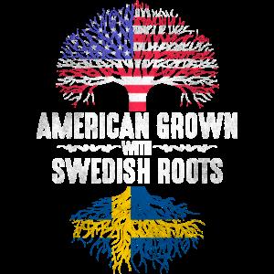 Amerikaner mit schwedischen Wurzeln