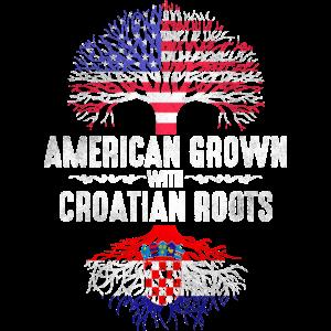 Amerikaner mit kroatischen Wurzeln