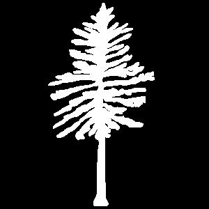 Baum Wald Blatt Natur Bäume Gärtner Geschenk Wald