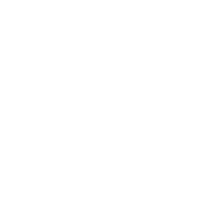 Lama Spucken