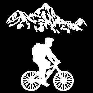 Fahrrad Drahtesel Rennrad Zweirrad