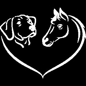 Pferd und Hund Hobby Geschenk Sport Dressur