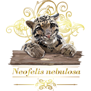 Nebulöser Leopard