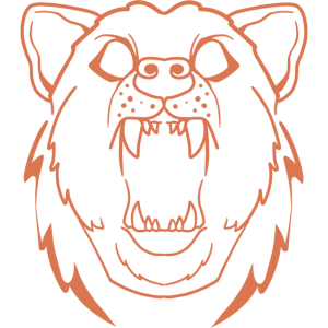 Bär Zeichnung Grizzly Portrait bear lineart