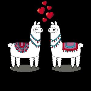 Ich liebe Dich Lama Paar verliebt mit Herzen