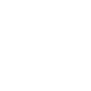this girl love dale earnhardt