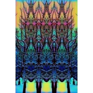 PhoTo-ARTwork.....Snow on Tree