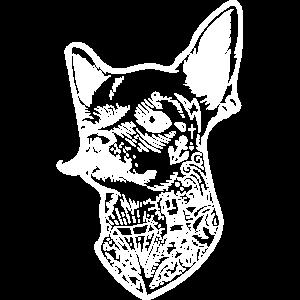 Chihuahua Hund mit Schnauzer
