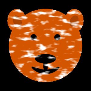 Bärengesicht, Braunbär,