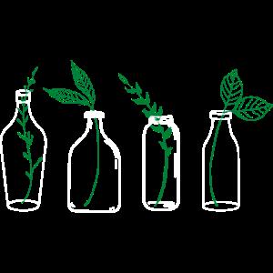 Pflanzen in einer Flasche