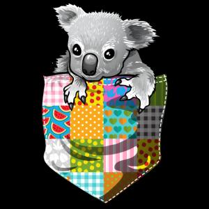 ein Koala in der Tasche