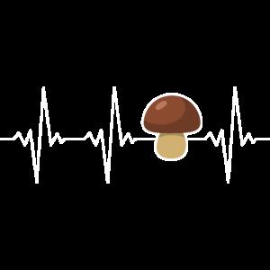 Pilzsammler Steinpilz Herzschlag