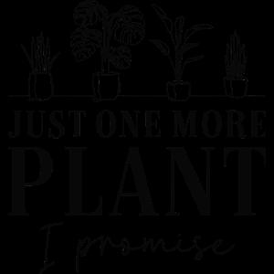 Nur noch eine Pflanze