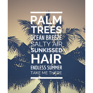 Palm Trees Ocean Breeze - Take me there.