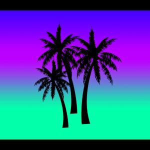 Drei Palmen mit Hintergrund
