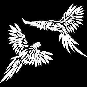 Papageien kämpfen