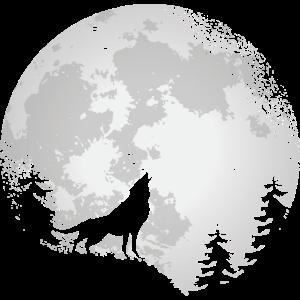 Wolf Naturschutz Raubtiere Natur Vollmond Wald