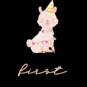 it's my first Birthday-Llama Geburtstagsshirt